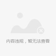 美式纯纸浅色经典大花对称客厅沙发背景墙壁纸